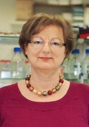 Prof. Dr. rer. nat. Charlotte Esser