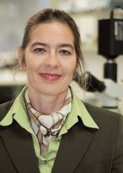 Univ.-Prof. Dr. med. Ellen Fritsche