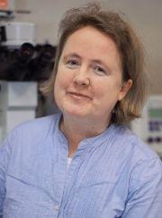 Prof. Anna von Mikecz